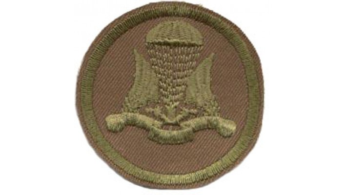 Airborne combat badge