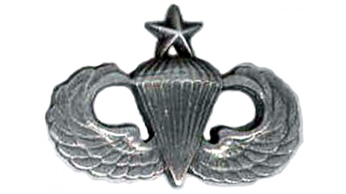 """Insigne ""US Senior Parawings''-Argent Antique"