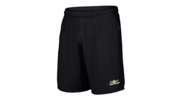 """9"""" Parawing Shorts"""